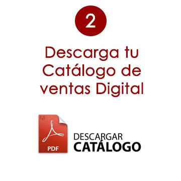 descarga tu catalogo digital rose bolsos